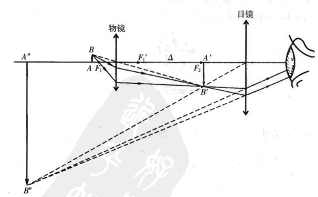 渔网的网坠收紧原理_光学部分的工作原理示意图