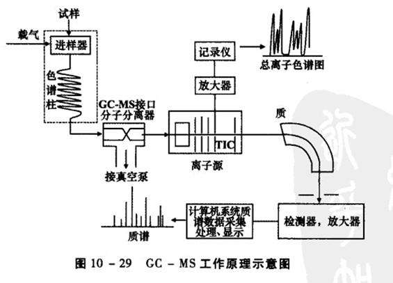 色谱法所用的检测器如氢火焰电离检测器