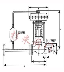 自力式压力调节阀(结构图)