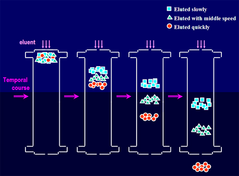 离子管柱分离示意图