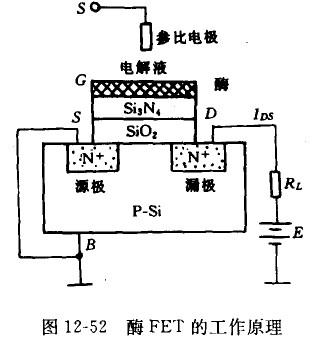 配场效应晶体管工作原理
