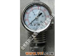 供应柴油机气缸最大压力表y-60图片